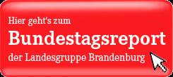 Zum Bundestasreport der Landesgruppe Brandenburg
